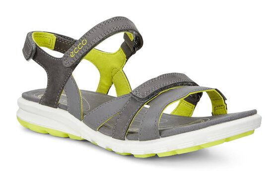 ECCO Cruise Sandal (DARK SHADOW/DARK SHADOW)