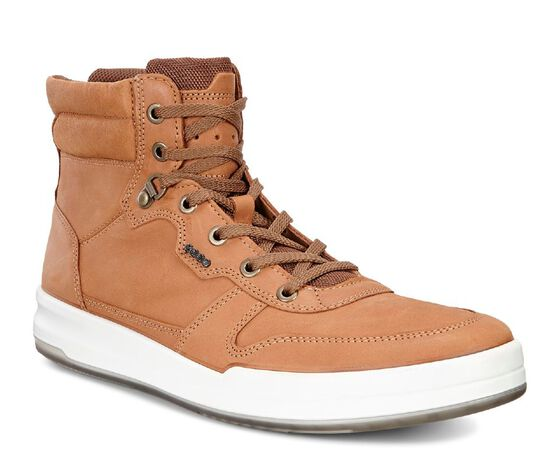 ECCO Jack High Top (LION)