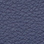 night sky/titanium metallic